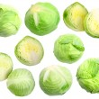 Set of fresh green cabbage — Stock Photo #10141186