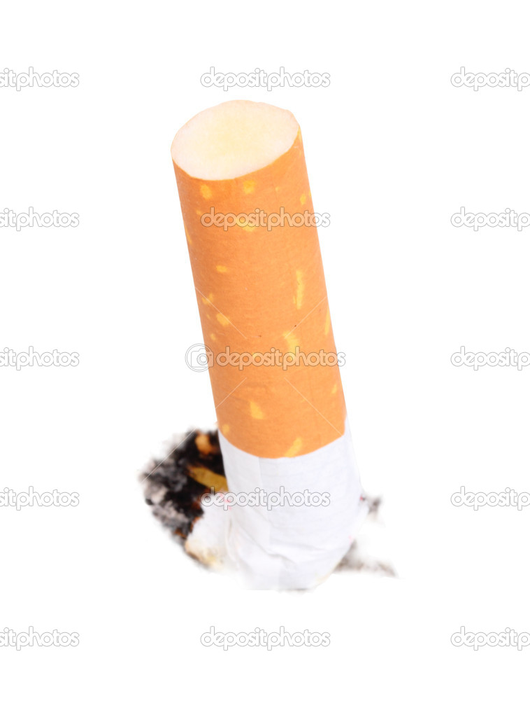Single cigarette butt with ash. Close-up. Isolated on white background. Studio photography.  Stock Photo #10145276