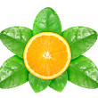 Orange fruit on green leaf with dew — Stock Photo