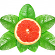 Grapefruit fruit on green leaf with dew — Lizenzfreies Foto