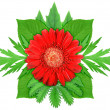 Stock Photo: Red flower with green leaf
