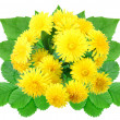 Bouquet of yellow flowers — Stock Photo #10379602