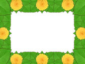 Floral frame with yellow flowers and green leaf — Stock Photo