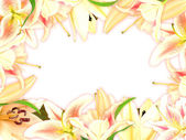 Floral frame with lily flowers and green leaf — Stock Photo