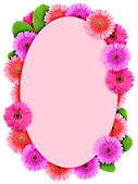 Floral ellipse frame with pink flowers — Stock Photo