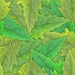 Seamless pattern of green leafs — Stock Photo