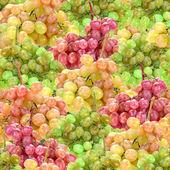 Seamless pattern of fresh ripe motley grape — Stock Photo