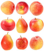 Abstract set of fresh red fruits — Stock Photo