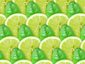 Background of lime slices and green leaf — Stock Photo