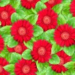 Stock Photo: Background of red flowers and green leaf