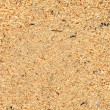 Sawdust texture — Stock Photo #8124068