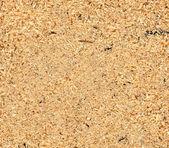 Sawdust texture — Stock Photo