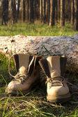 Hiking boots on the clearing in pine wood — Stock Photo