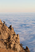 Sunlit cliffs and sea in clouds — Stock Photo