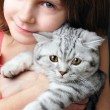 Child hugging silver white cat kitten — Stock Photo