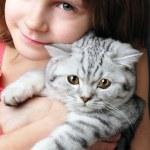 Child hugging silver white cat kitten — Stock Photo