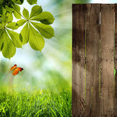 Just open your doors! abstract summer backgrounds — Stock Photo
