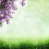 Sommerzeit. optimistisch abstrakt mit lila baum — Stockfoto