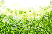 Abstract spring backgrounds with defocused bokeh — Stock Photo