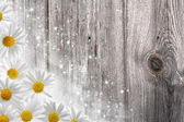 Old wooden desk and daisy flowers, abstract backgrounds — Stock Photo