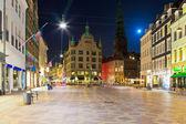在哥本哈根,丹麦老镇的夜景观 — 图库照片