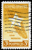 USA - CIRCA 1948 Gold Star Mothers — Stock Photo