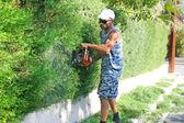 园丁 — 图库照片