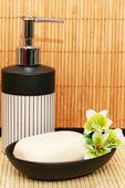 Los dispensadores de jabón y bar — Foto de Stock