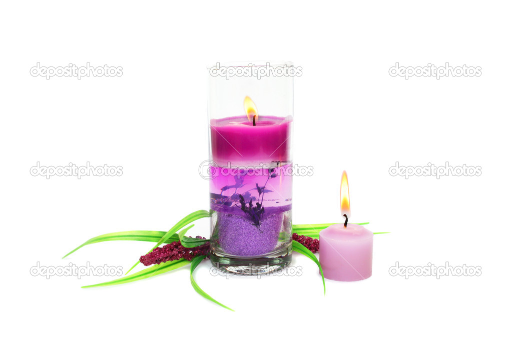 Pink burning candles and plant isolated on white background. — Stock Photo #8855187