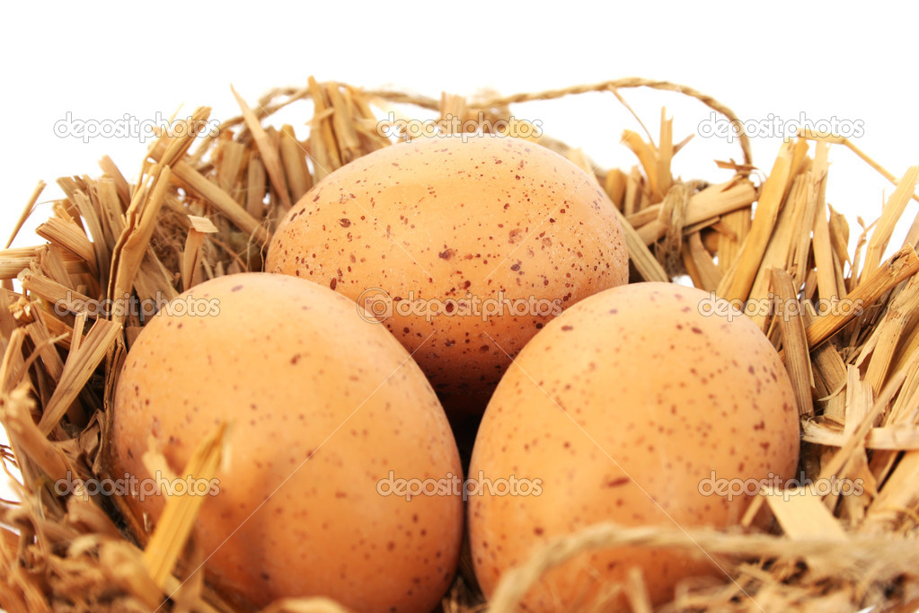 Easter  eggs nest isolated on white background. — Stock Photo #9560829