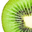 Kiwi fruit — Stock Photo #9903352