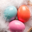 Colorfull Easter eggs on feather background — Stock Photo #9087575