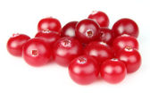 Heap of cranberry — Stock Photo