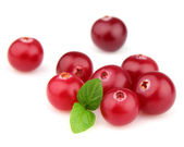 Cranberry with mint — Stock Photo