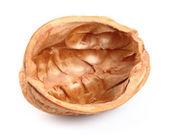 Nutshell of walnut — Stock Photo