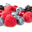 Fresh berries in closeup — Stock Photo