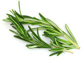 Rosemary spices — Stock Photo