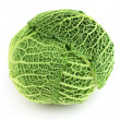 Cabbage — Stock Photo #9591380