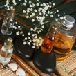 Stock Photo: Spa still life