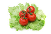 Tomato and lettuce salad isolated — Stock Photo