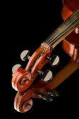 Violin on black background — Stock Photo