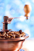 Close up of coffee grinder on the blurred background — Stock Photo