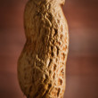 Stock Photo: Peanut macro