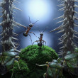 Stock Photo: No monsters at Rotten Swamp!! ants stories, thriller
