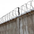 Razor Wire Above a Fence — Stock Photo #9334443