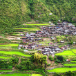 Stock Photo: Village in Cordillermountains