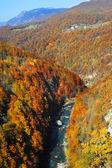 Tara River Gorge — Stock Photo