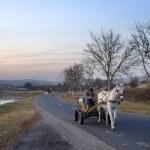 ������, ������: Horse cart