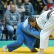 Judo Union — Stock Photo #8554028