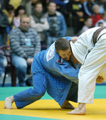 Judo Union — Stock Photo